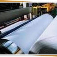 Pulp And Paper In Indonesia